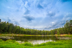 Forest Lake Images stock