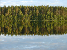 Forest lake. Reflection of forest in lake Royalty Free Stock Photography