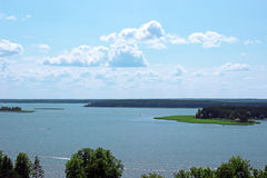Forest Lake Royalty-vrije Stock Foto