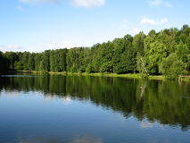 Forest lake. Summer landscape: lake and forest on the bank Royalty Free Stock Images