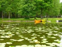 Forest Lake Fotografía de archivo libre de regalías