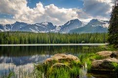 Forest Lake Lizenzfreie Stockfotos