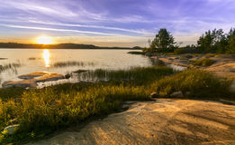 Forest Lake Royalty-vrije Stock Afbeeldingen