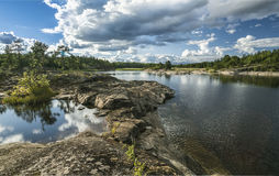 Forest Lake Stockfotografie
