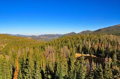Forest and lake from above in Rocky Mountains Royalty Free Stock Images