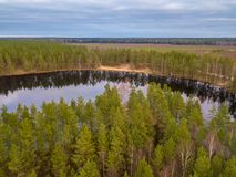 Forest Lake in the Autumn. Aerial View stock photo