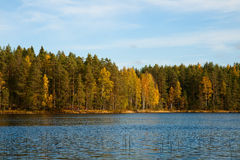 Forest lake in autumn Royalty Free Stock Photo
