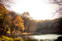 Forest and lake in autumn colors Stock Image