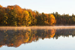 Forest lake at autumn Stock Images