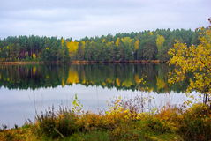 Forest Lake. A beautiful calm lake in the autumn forest stock image