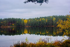 Forest Lake. A beautiful calm lake in the autumn forest royalty free stock photography