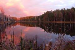 Majestic sunrise over beautiful forest lake. Royalty Free Stock Images