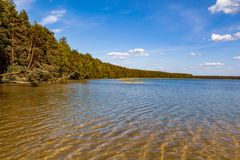 Forest Lake in Belarus stock photography