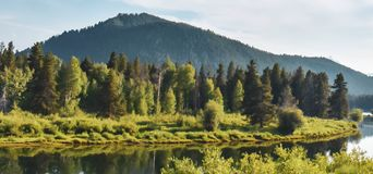 Forest Lake cach? par Wyoming photos stock