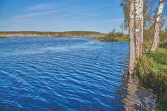 Forest Lake in centraal Rusland stock fotografie