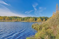 Forest Lake in centraal Rusland stock afbeeldingen