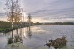 Forest Lake in centraal Rusland royalty-vrije stock fotografie