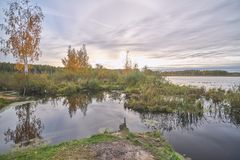Forest lake in Central Russia royalty free stock photos