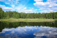 Forest lake and cloudy blue sky. Reflection of clouds in water Stock Images