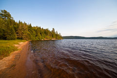 Forest lake coast Royalty Free Stock Photography