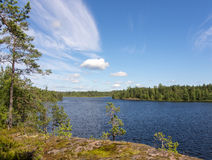 Forest lake Stock Photo