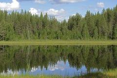 Forest Lake do norte em Lapland finlandês Paisagem do VERÃO imagens de stock