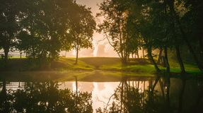 Forest and lake at early morning. Trees reflected on water, soft dawn light stock image