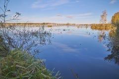 Forest Lake em Rússia central imagens de stock royalty free