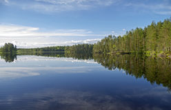Forest lake in the evening. Royalty Free Stock Images