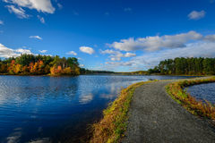 Forest Lake in Fall Stock Photography
