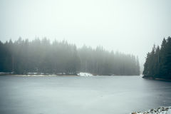 Forest lake in fog II Royalty Free Stock Photography