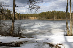 Forest lake. Forest frozen lake in spring Stock Photo