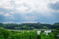 Forest and lake in green spring. Forest and river in green spring summer sunshine day Stock Photos