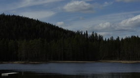 Forest Lake i Sverige Fotografering för Bildbyråer