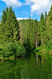 Forest Lake. Landscape with lake, forest, and blue sky Stock Photos
