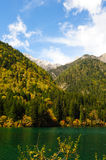 Forest and lake landscape of China jiuzhaigou Royalty Free Stock Image