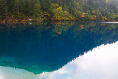Forest and lake landscape of China jiuzhaigou Stock Photo