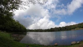 Forest Lake Landscape With Sky und Wolken stock video footage