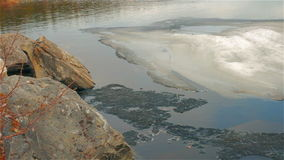 Forest lake. Melting ice in water of forest lake stock video footage