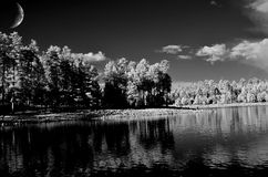 Forest lake and moon Royalty Free Stock Photo