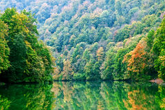 Forest lake morning in autumn Stock Photo