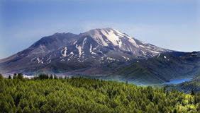 Forest Lake Mount Saint Helens Royalty Free Stock Images