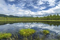 Forest Lake in the mountains in Norway. Hiking background.  royalty free stock images