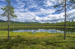 Forest Lake in the mountains in Norway. Hiking background.  royalty free stock photo