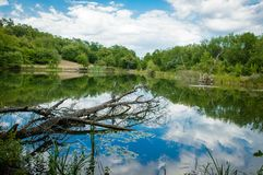A forest lake in the mountains of unusual beauty royalty free stock images