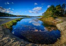Forest Lake na queda Fotografia de Stock