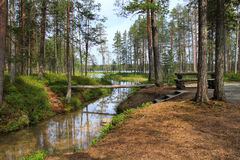 Forest lake and narrow creek. In Hossa national park Finland royalty free stock photos
