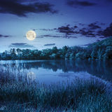Forest and lake near the mountain at night stock photography