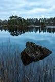 Forest Lake nella caduta Fotografie Stock