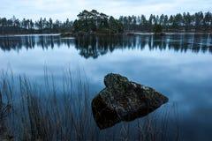 Forest Lake nella caduta Fotografia Stock